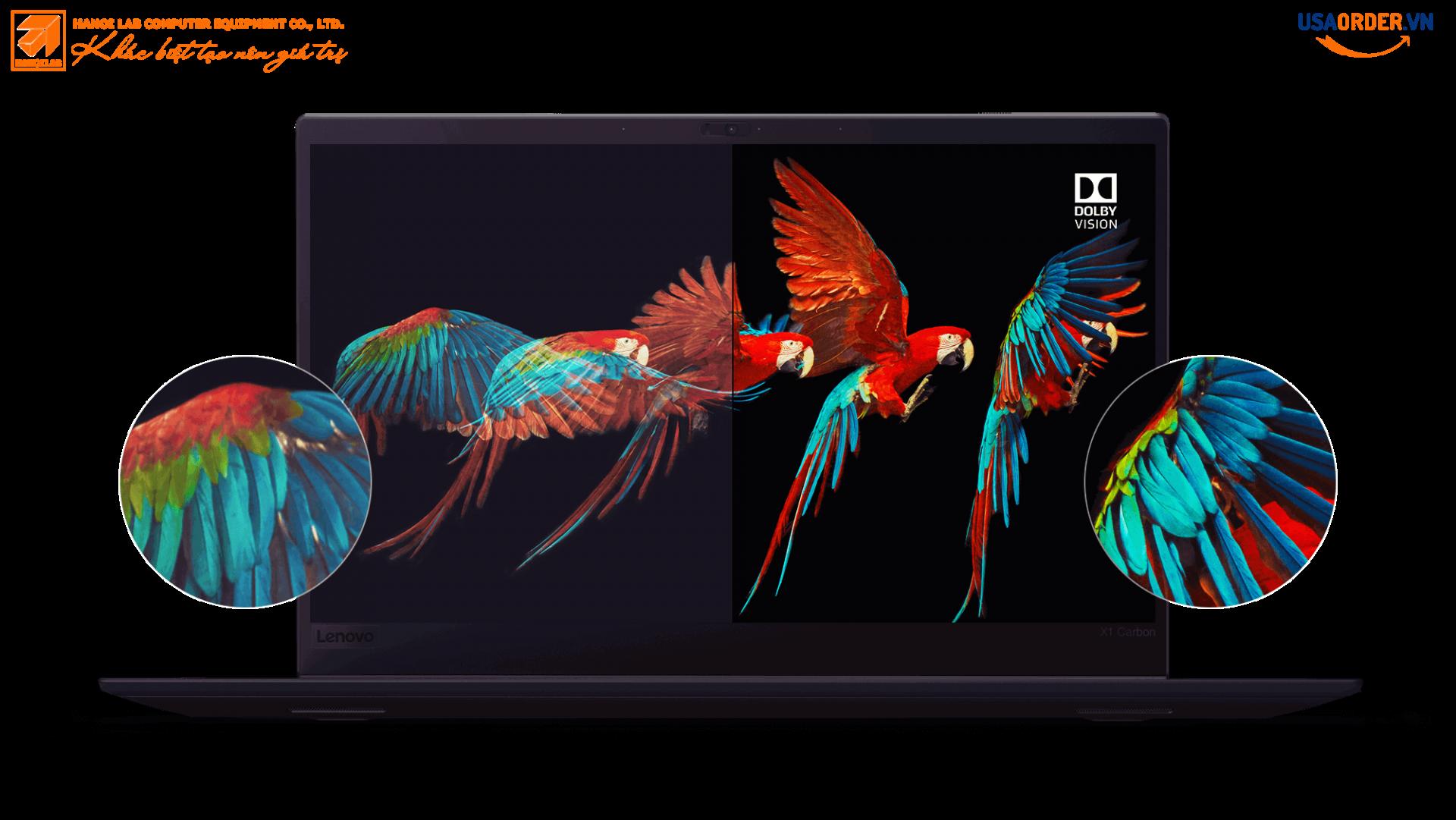 Màn hình hiển thị Carbon ThinkPad X1 của Lenovo ThinkPad X1 với Dolby Vision, hiển thị chi tiết tuyệt vời và độ chính xác màu sắc của đôi cánh vẹt trong chuyến bay.