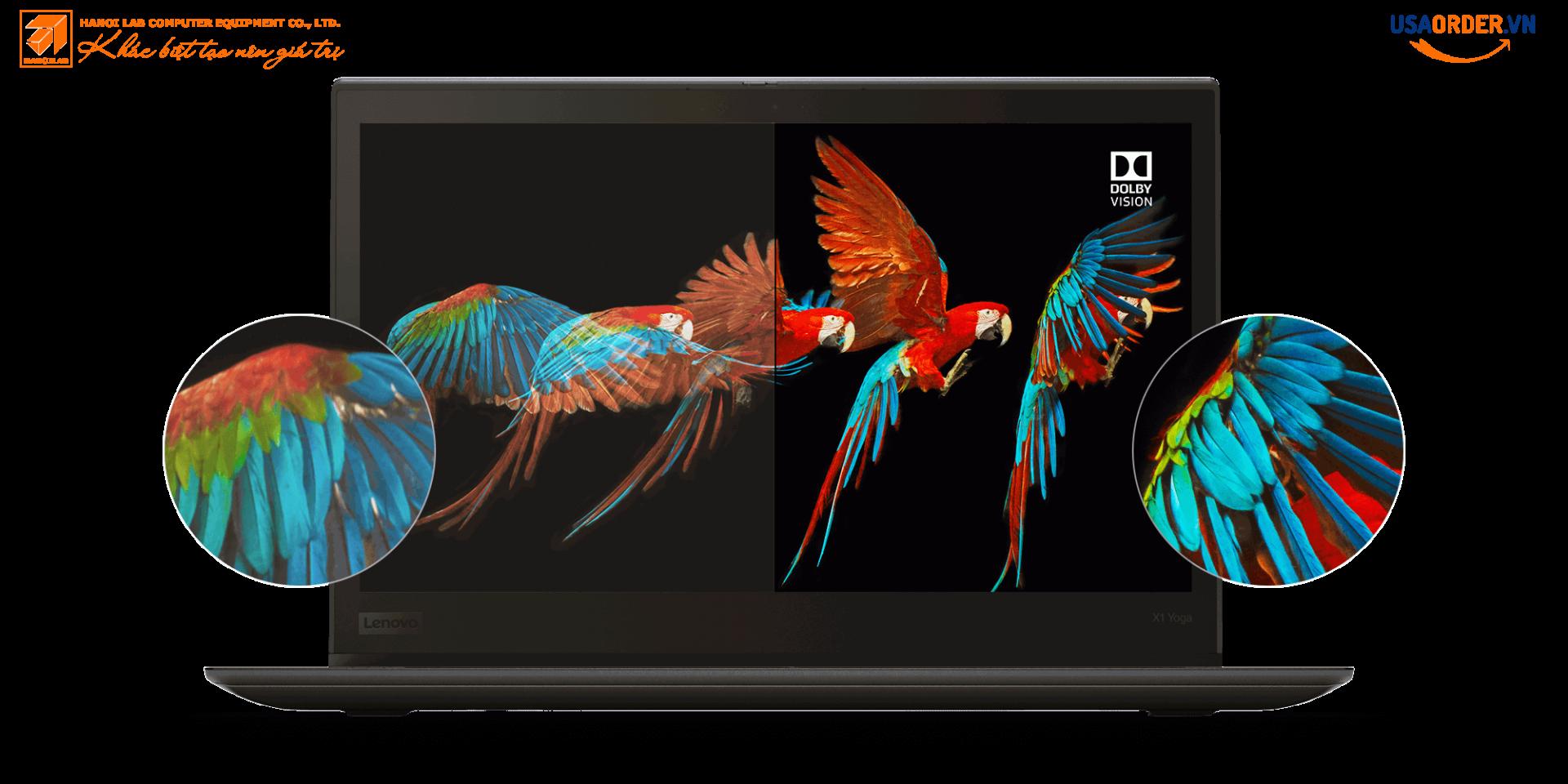 Màn hình hiển thị Yoga ThinkPad X1 của Lenovo ThinkPad X1 với Dolby Vision, hiển thị chi tiết tuyệt vời và độ chính xác màu sắc của đôi cánh vẹt trong chuyến bay.